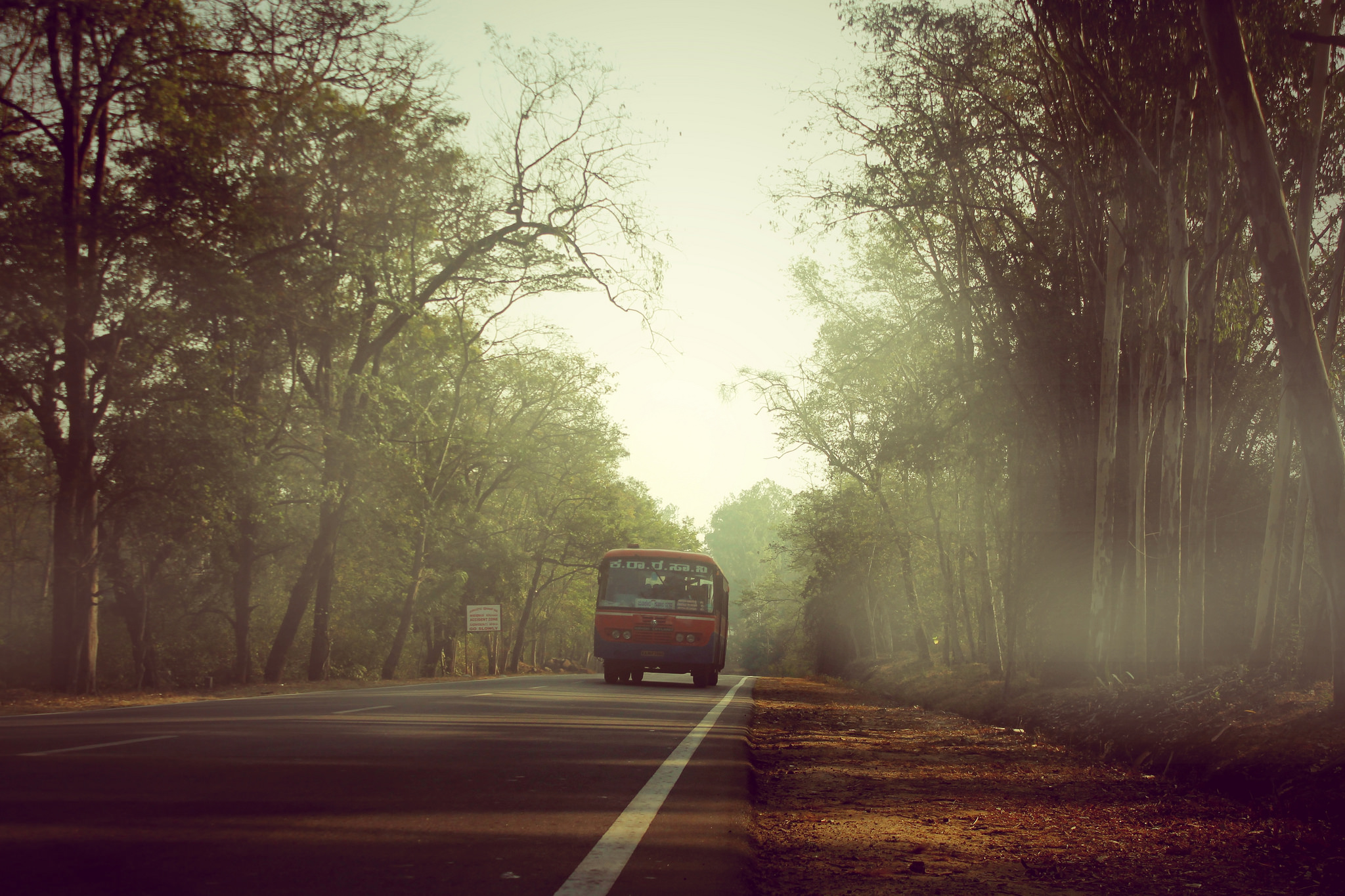 Holiday in Coorg