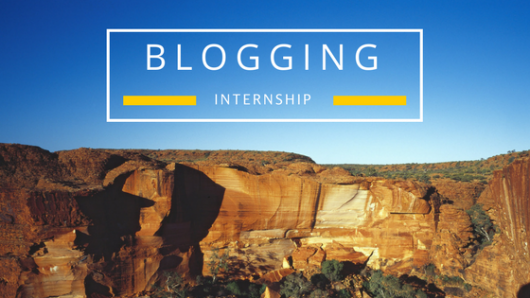 blogging interns